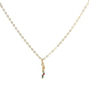 Necklace-snake-of-colors